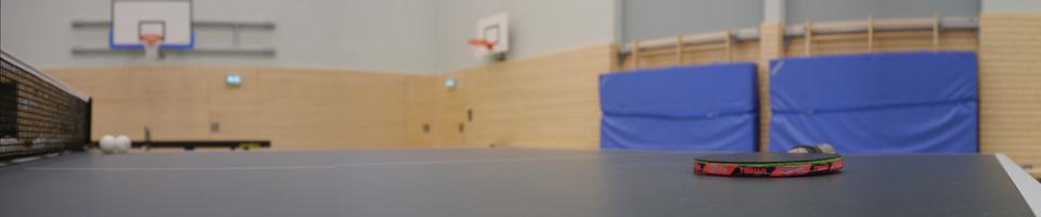 Tischtennis1.jpg