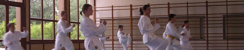 karate_galerie.jpg