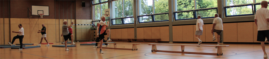 Prellball-Gym4.jpg